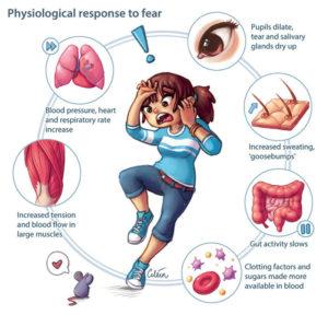 fisiologia e cause degli attacchi di panico